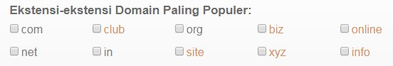 jenis jenis nama domain