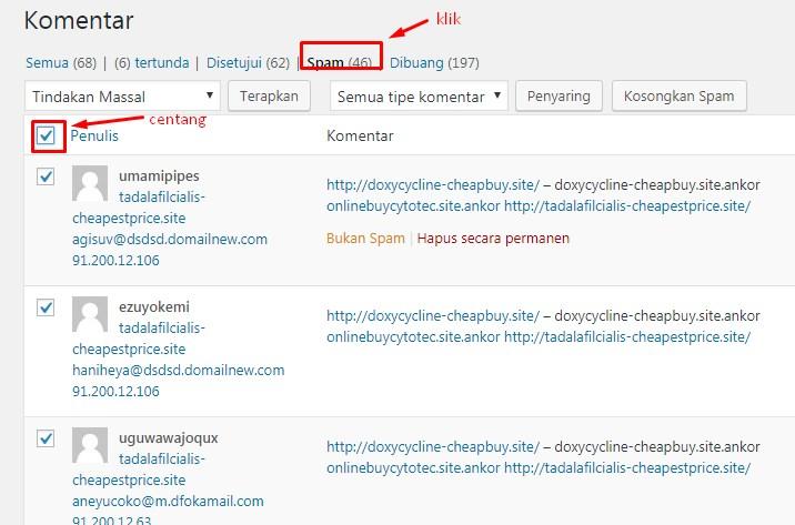 Cara Menghapus Komentar Spam Di WordPress 3
